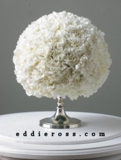 carnations lush and lovely by eddieross.com.jpg